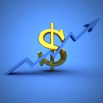 įmonės akcijų pasirinkimo privalumai ir trūkumai